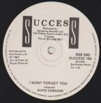 I WONT FORGET YOU - Rupie Edwards