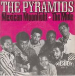 MEXICAN MOONLIGHT / THE MULE - The Pyramids