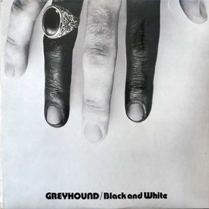 BLACK AND WHITE - Greyhound