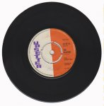 CHECK HIM OUT / THE VAMPIRE - The Bleechers /The Upsetters