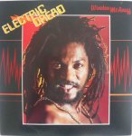 ELECTRIC DREAD - Winston Mcanuff