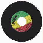 POWER STRUGGLE - Bunny Wailer