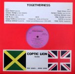 TOGETHERNESS - Various Artists