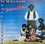 "12"" OF PLEASURE - General Echo"