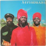 ARISE - Abyssinians
