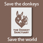 Save the donkeys